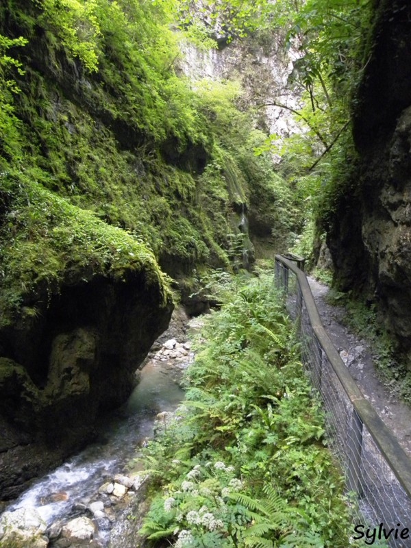 gorges kakuetta pays basque14