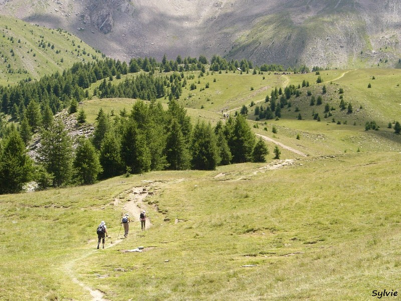 Promenade Randonnee Trekking C Est Quoi La Difference
