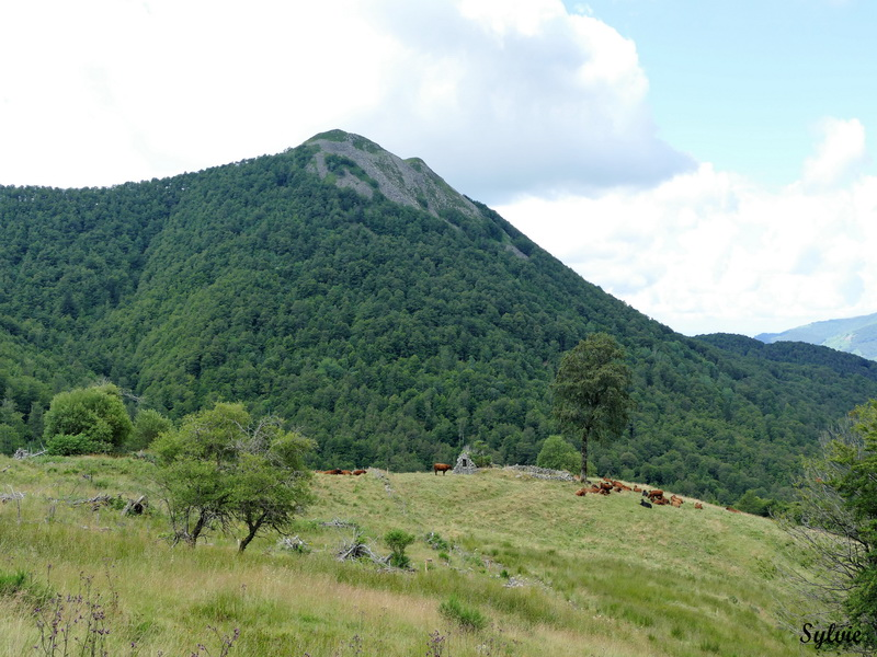 usclade puy griou4
